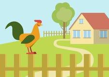 Cock rooster farm fence flat design cartoon vector animals birds. Cock rooster on the farm fence flat design cartoon vector animals birds. Flat zoo nature Stock Photos