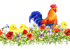 Cock rooster and small chicks in grass, flowers. Seamless pattern. Watercolor. Cock rooster and small chicks in grass and flowers. Seamless pattern. Watercolor Stock Images