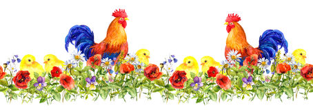 Cock rooster and small chicks in grass, flowers. Seamless pattern. Watercolor Stock Photo