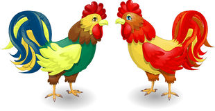 . Two multi-colored cockerels on a white background royalty free illustration