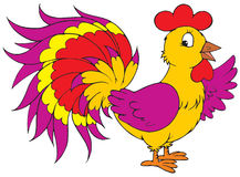 Cock (vector clip-art) Stock Photography
