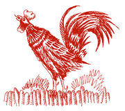 Cock (vector). Drawing about cock shout. In a retro style Royalty Free Stock Photos