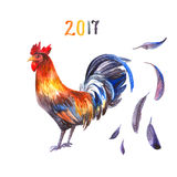 Cock on white background Stock Images