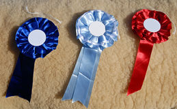 Cockades Sheep awards Royalty Free Stock Photography