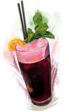 Cockatil colorido esboçado Foto de Stock Royalty Free