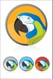 Cockatoo. Vector Cockatoo illustration icon Cartoon Stock Image