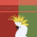 Cockatoo flat postcard Royalty Free Stock Photos