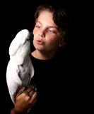 cockatoo moluccan Стоковые Фото