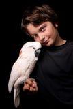 Cockatoo moluqueño con el muchacho Imágenes de archivo libres de regalías