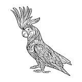 Cockatoo parrot coloring book for adults vector Stock Photo