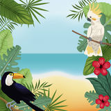 Cockatoo and toucan leaves tropical beach Stock Photography