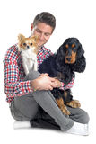 Cocker, chihuahua and man Stock Images