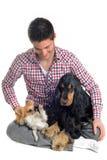 Cocker, chihuahua and man Royalty Free Stock Image