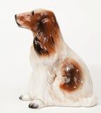 Cocker Spaniel Stock Image