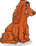Cocker spaniel dog cartoon illustration Royalty Free Stock Photography