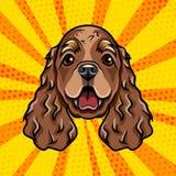 Cocker Spaniel dog portrait. Spaniel breed. Vector. Cocker Spaniel dog portrait. Spaniel breed. Vector illustration Stock Photos