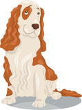 Cocker spaniel-Hundekarikaturillustration Stockfoto