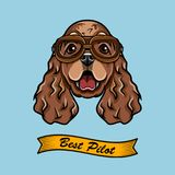 Cocker Spaniel Pilot. Dog Aviator. Dog breed. Spaniel head face. Vector. Cocker Spaniel Pilot. Dog Aviator. Dog breed. Spaniel head face. Vector illustration Royalty Free Stock Images
