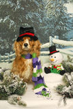 Cocker Spaniel and Snowman Stock Images