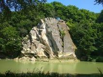 Cockerel βράχου στοκ εικόνες