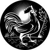 cockerel κοκκόρων λαλώντας κόκκ&o διανυσματική απεικόνιση