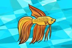 Cockerel aquarium fish. Pop art retro vector illustration Royalty Free Stock Images