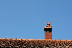 Cockerel on a roof against blue sky Stock Photography