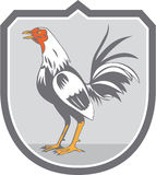 Cockerel Rooster Standing Shield Retro Royalty Free Stock Photos