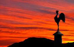 Cockerel weathervane and red sky Royalty Free Stock Photo