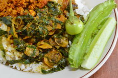 Cockle curry with betel leaves and vegetable on rice Stock Photography