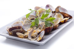 Cockles with sauce Royalty Free Stock Photos