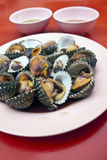 Cockles. Seafood in Bangkok, Thailand Stock Images