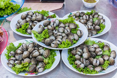 Cockles. Seafood in  Market Stock Photos