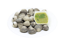 Cockles with seafood sauce on white Royalty Free Stock Photo