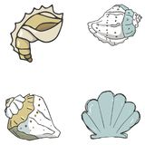 Cockleshell illustration vector geometric drawing shells font color element sea ocean life yellow blue texture font top view clip. Cockleshell illustration Royalty Free Stock Image