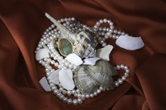 Cockleshells, a coral and pearls Royalty Free Stock Photography