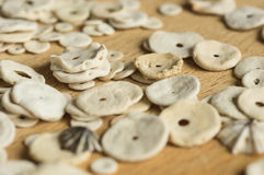 The cockleshells scattered on a wooden surface Stock Image