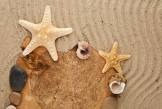 Cockleshells, stone, paper Royalty Free Stock Image