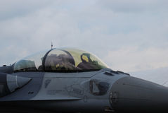 cockpitkämpestråle royaltyfria foton