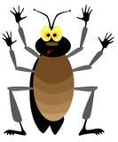 Cockroach Royalty Free Stock Photos