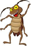 Cockroach cartoon Royalty Free Stock Photography