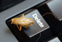 Cockroach delete idea Royalty Free Stock Image