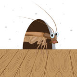 Cockroach in the hole royalty free illustration