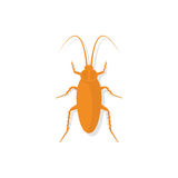 Cockroach icon vector Stock Images