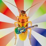 Cockroach Play Guitar Stock Photos