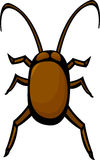 cockroach vector illustration Royalty Free Stock Images