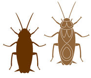 Cockroach. Vector illustration (EPS 10 Stock Photography