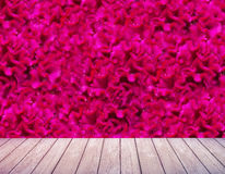Cockscomb flower backgrounds and floor wood Royalty Free Stock Photo