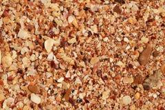 Cockshells como fondo Imagen de archivo