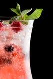 Cocktai alcoolique froid Image stock